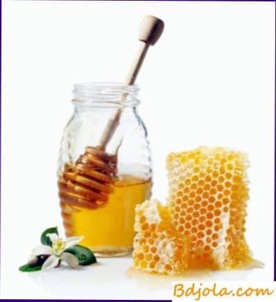 Настойка мёда чеснока и яблочного уксуса