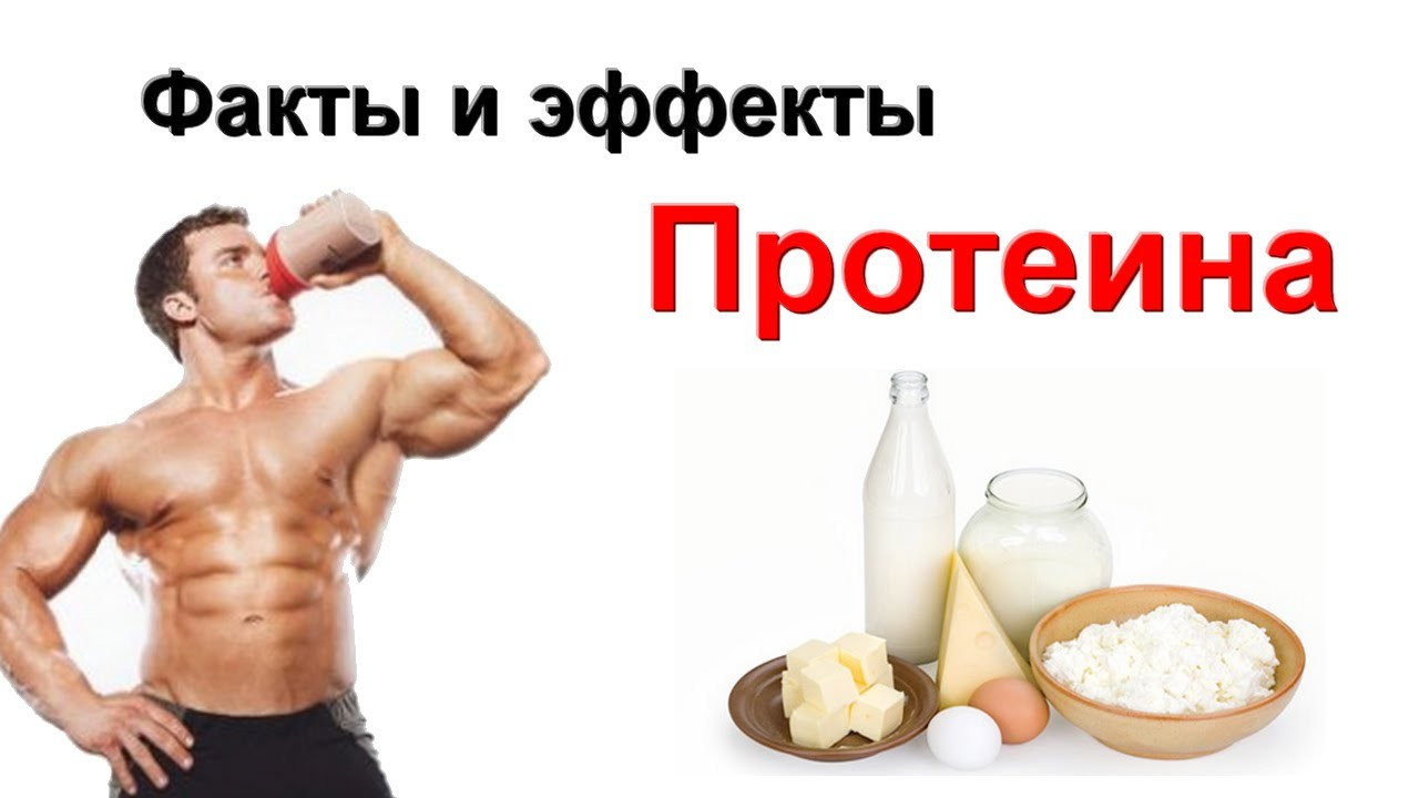 Как сделан протеин