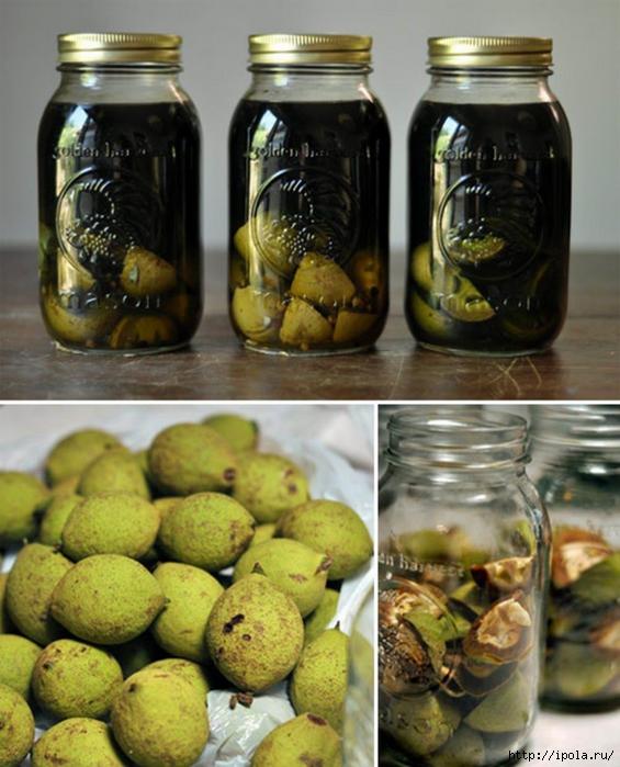 Как сделать водку из зеленых орехов 475