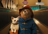 Вышел новый трейлер фильма о медвежонке Паддингтоне