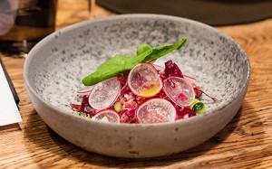 Ресторан нордической кухни MØS: номинальная Noma