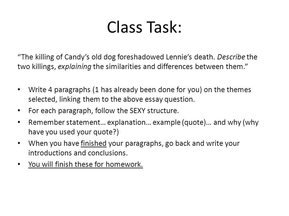 Essay writing class 6