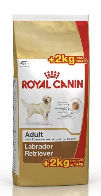 Корм royal canin labrador retriever