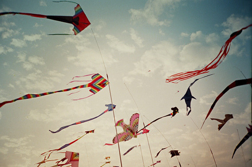 Write my essay on kite flying day