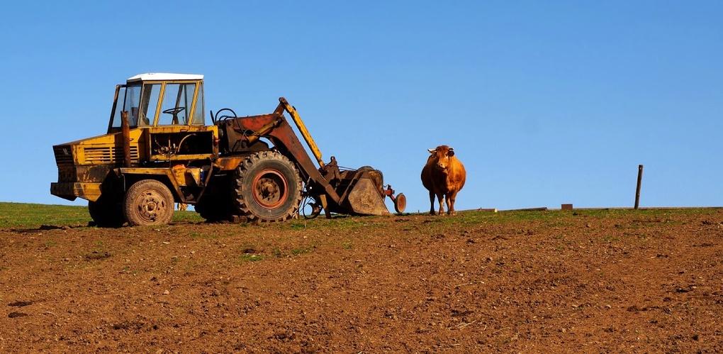 Землю в Волос под сельское хозяйство