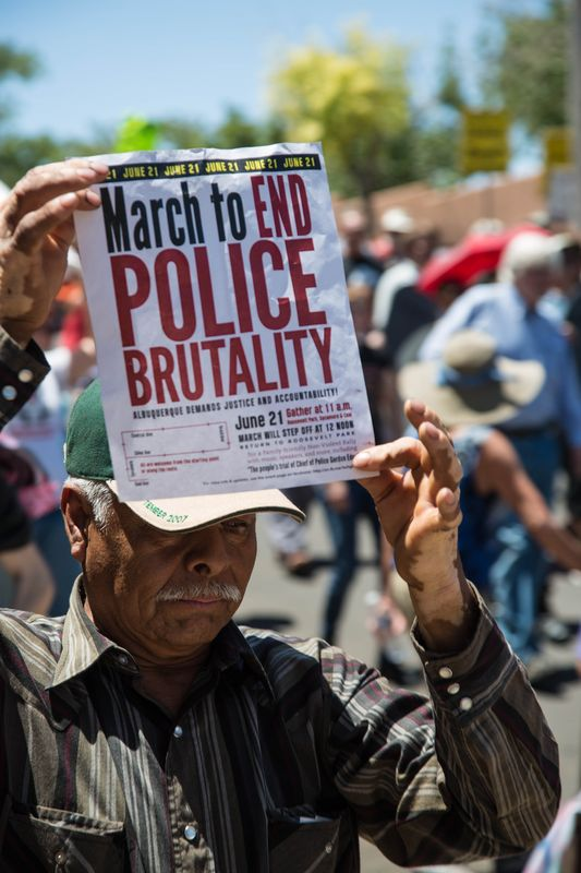 Police brutality paper