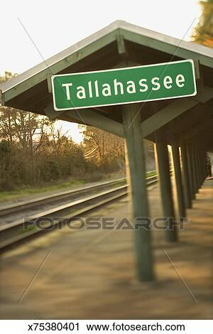 Tallahassee loan places