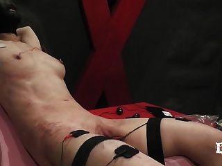 Free video sexy solo nude women