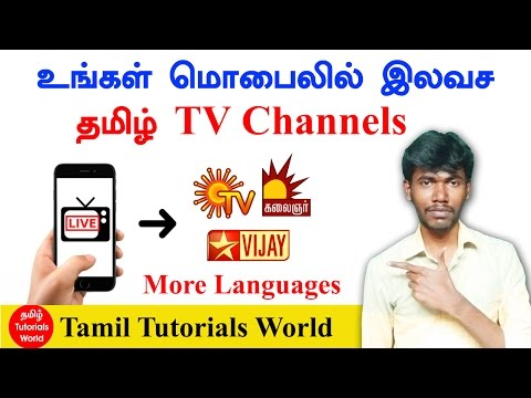 LIVE TV - Channels Television