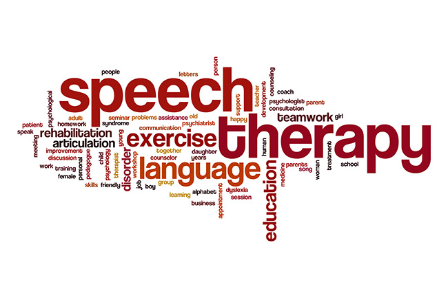 What are Speech and Language Therapists?: Child