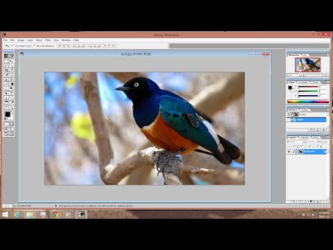 Download adobe photoshop express for windows 7 - Softonic
