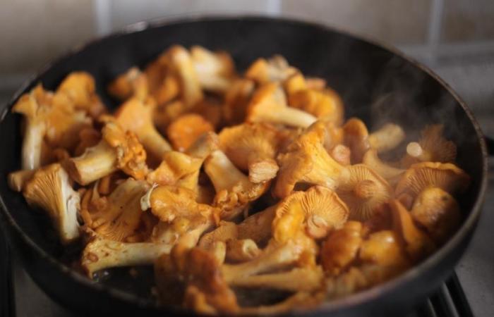 Картофель с лисичками рецепт с фото