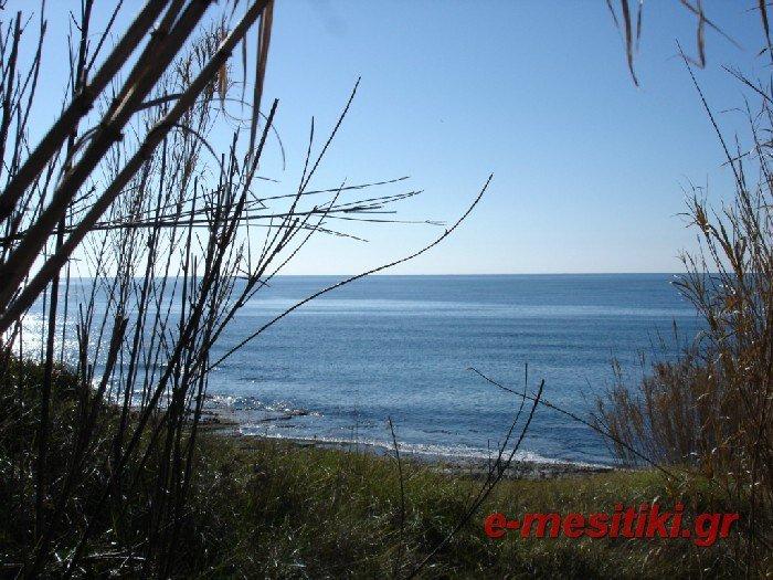 Участок в остров Превеза за 600 евро