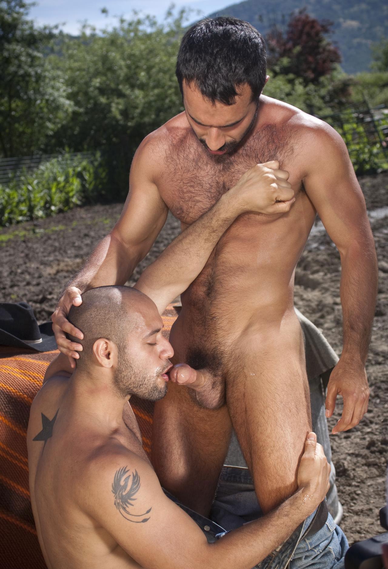 Gay guy erotic sexual