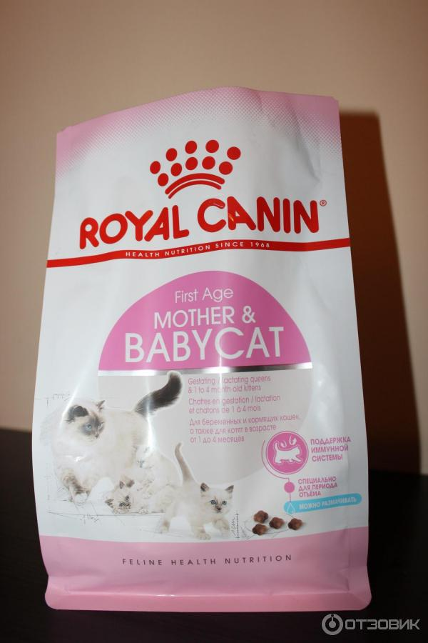 Корм royal canin babycat сухой