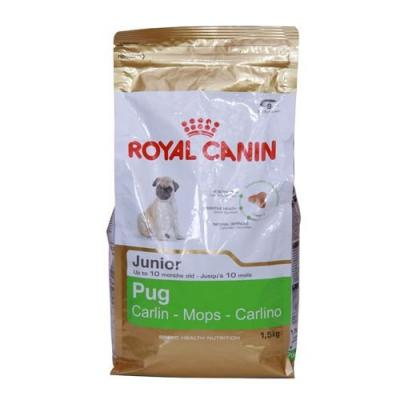 Mini adult корм royal canin мопс
