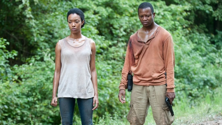The-walking-dead- season 4 Online Gratis Subtitrat