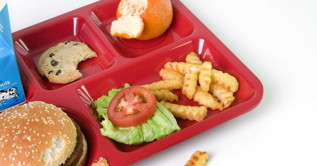Unhealthy Food in Schools Free Essay - Blogger
