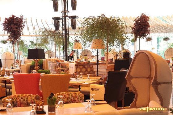Ресторан Shakti Terrace - фотография 5