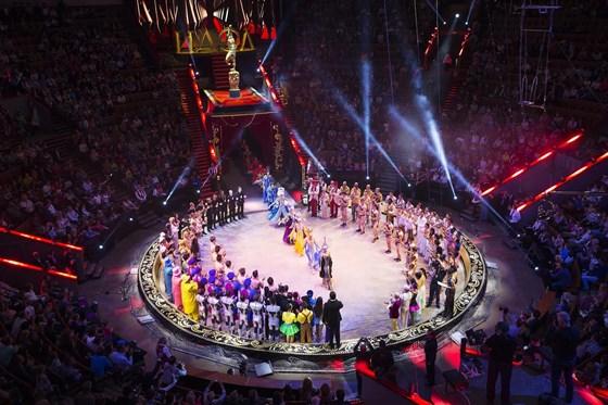 Фото большой цирк на проспекте Вернадского