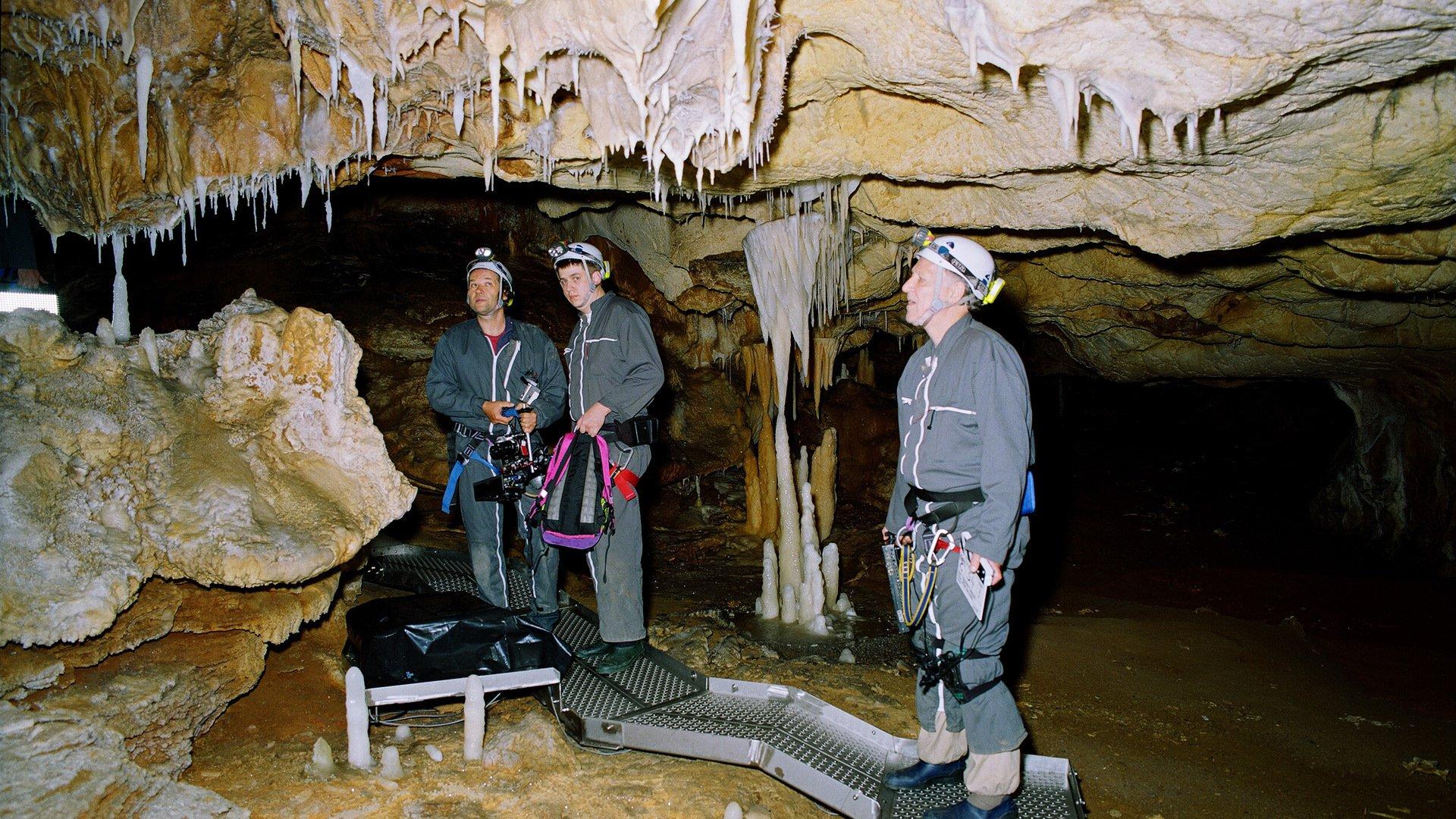 Пещера забытых снов 3D смотреть фото