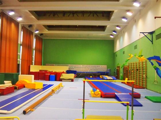 Фото европейский гимнастический центр в Лужниках