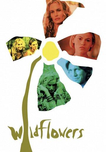 Постер Дикие цветы