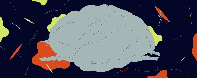 «Как работает мозг» Риты Картер