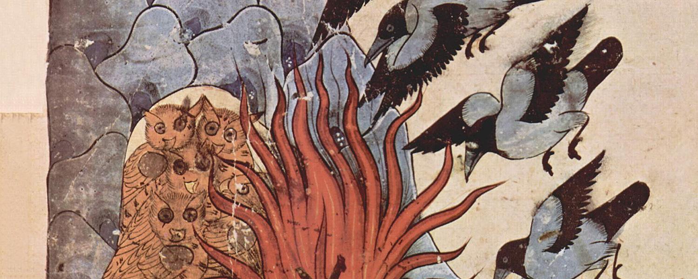 Войны животных в мировом искусстве