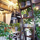 Ресторан Шайка-лейка - фотография 5