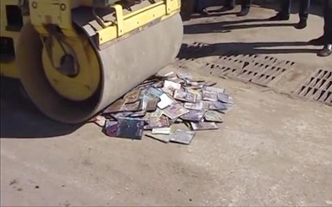 Коровы, айфоны, марихуана, икра: как в России уничтожают запрещенные товары