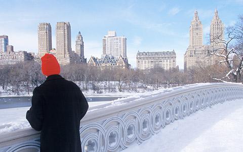 «Снежная королева» Майкла Каннингема: роман как оптический эффект