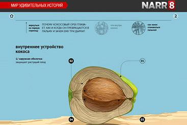 Михаил Янович про научно-популярные сериалы Narr8