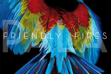 Friendly Fires — «Pala»