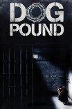 Загон для собак / Dog Pound