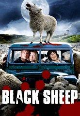 Постер Паршивая овца
