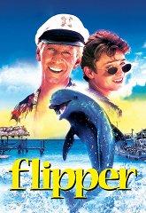 Постер Флиппер