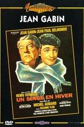 Постер Обезьяна зимой