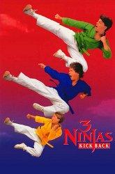 Постер Три ниндзя наносят ответный удар