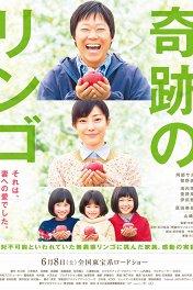 Чудесные яблоки / Kiseki no ringo