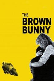 Коричневый кролик / The Brown Bunny