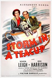 Буря в стакане воды / Storm in a Teacup