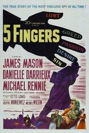 Пять пальцев / 5 Fingers