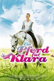Обучение, любовь и лошадь / Klara
