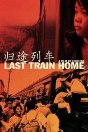 Последний поезд домой / Last Train Home