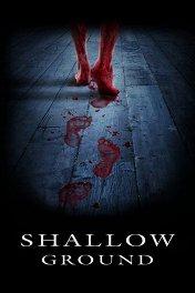 Месть мертвецов / Shallow Ground