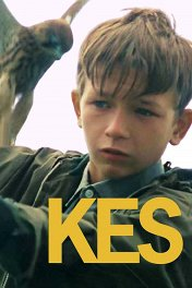 Кес / Kes