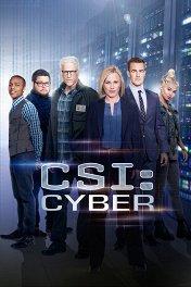 CSI: Киберпространство / CSI: Cyber
