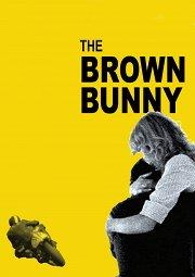 Постер Коричневый кролик