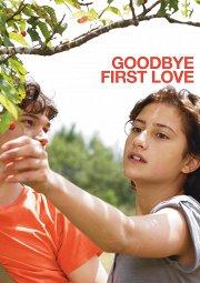 Постер Первая любовь